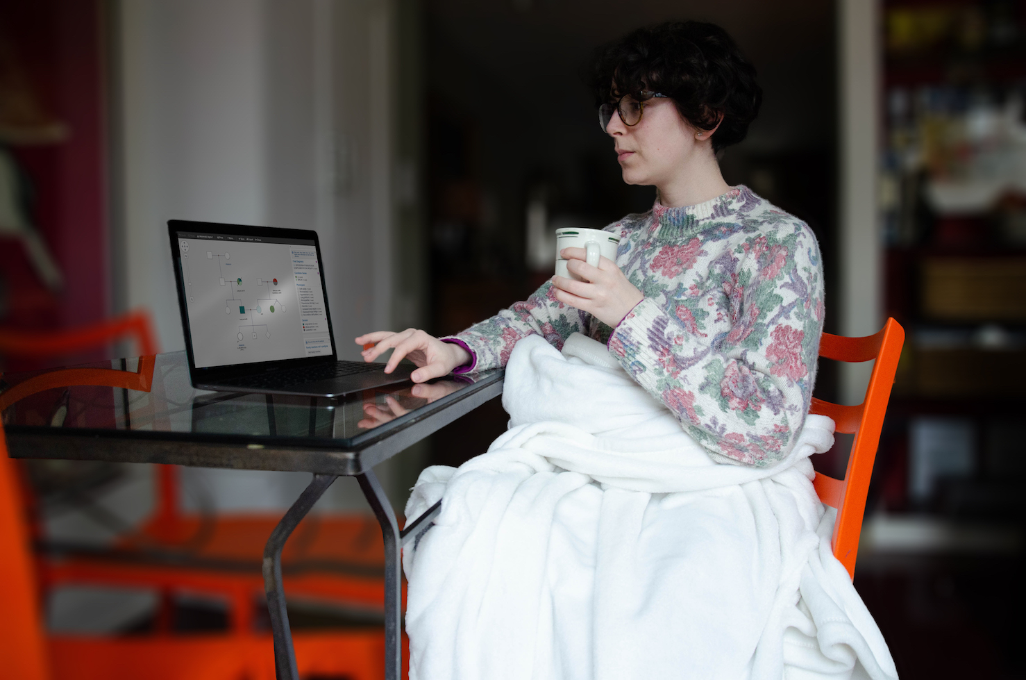 A woman is working on her laptop in her kitchen table with a mug in hand and a blanket over her legs. On the laptop screen, a pedigree is visible, and one hand rests on the mouse keyboard mid-action while drawing the pedigree.